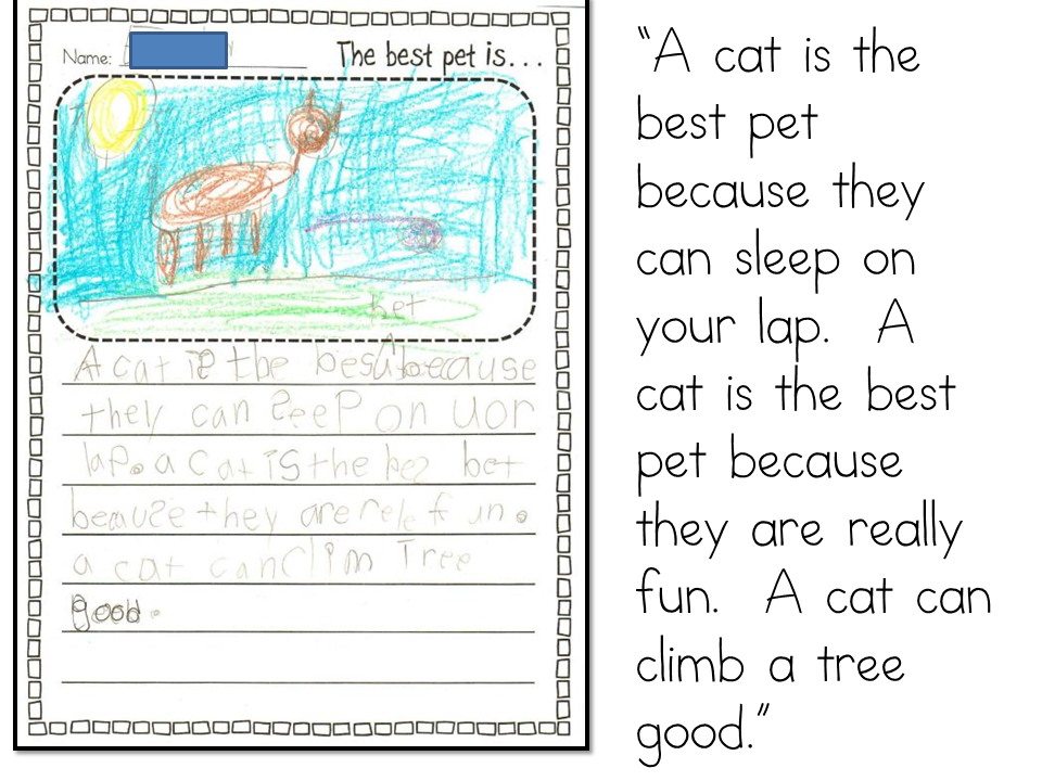 My favourite pet essay for class 1